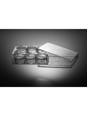 6 Well Cell Culture Plate, Flat, Non-Treated, For Suspension Cells, Sterile 1/pk, 50/cs