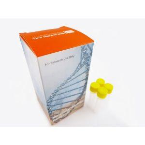 Molecular Biology Kit, Seamless cloning Master Mix (Kit), 40 Prep